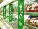 Organic Food Segment Grows Four Times in Three Years