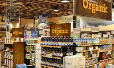 17% of New Food Products Launched in Europe have Organic Label: Mintel Research